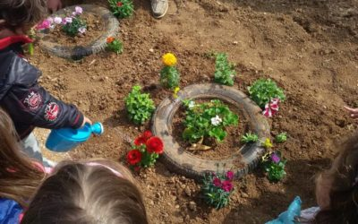 Μαθήματα κηπουρικής